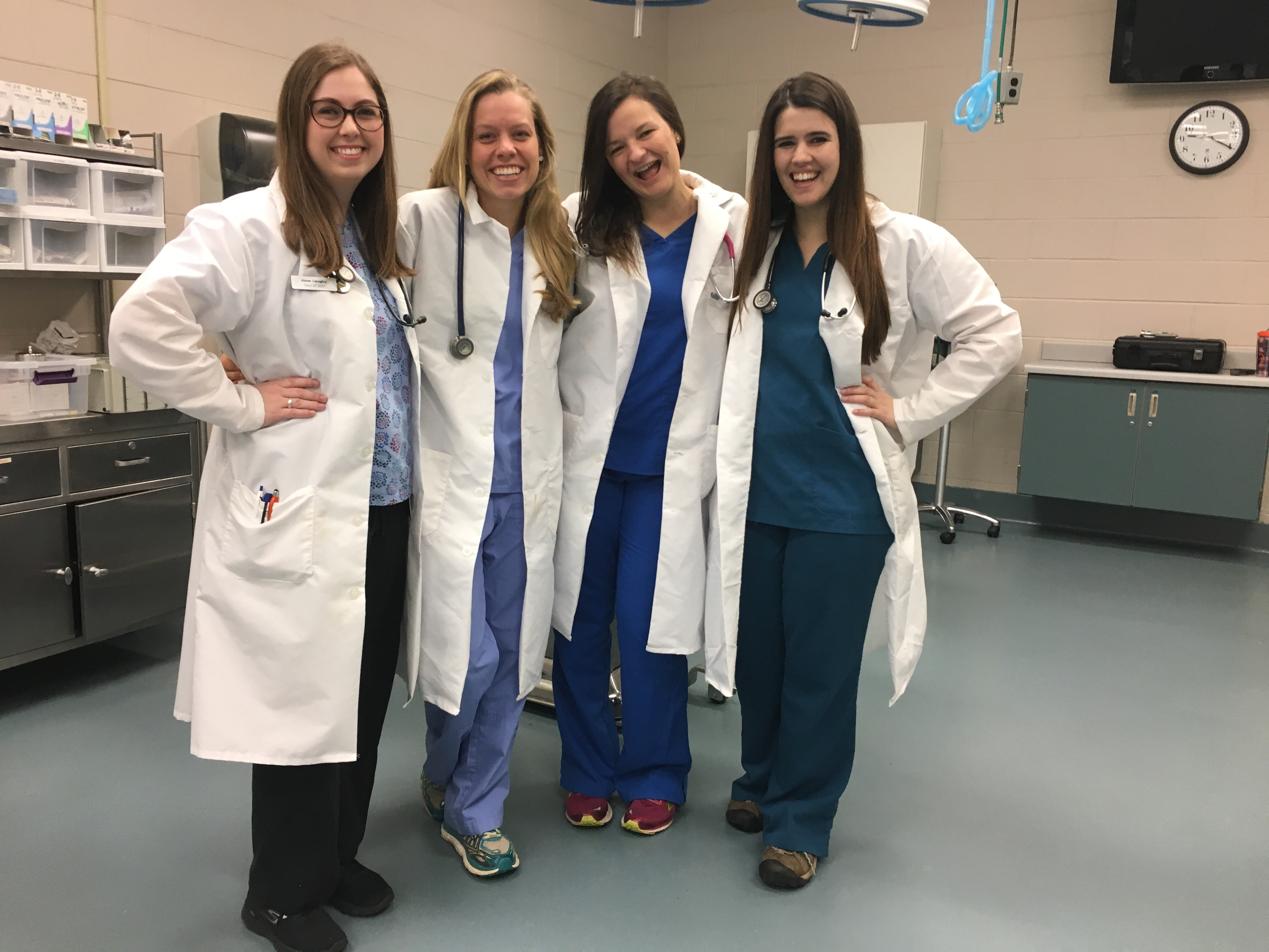 Amy Hansen, second from left, and students in small animal  physical diagnosis class.